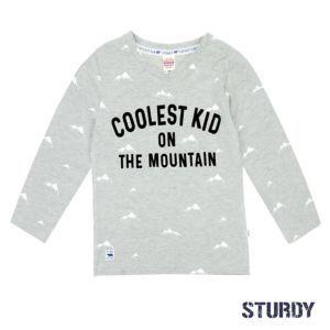 Sturdy Jungen Shirt Langarm Grau Größe 98, 110