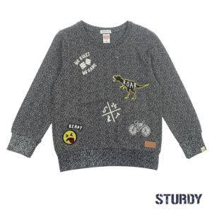 Sturdy Sweatshirt Gr.92-140